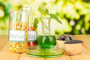Контроль за биоэтанолом передадут  Росалкогольрегулированию