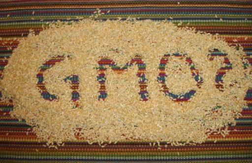 В России ГМО-товарам дали зелёный свет